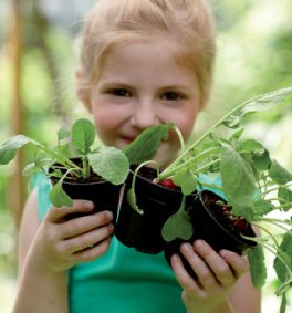 Materas para germinar