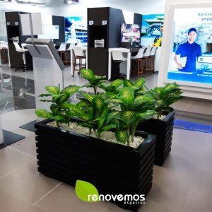 Proyecto-Plantas-variegada